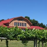 North Carolina Grape Stomp @ Gregory Vineyards | Angier | North Carolina | United States